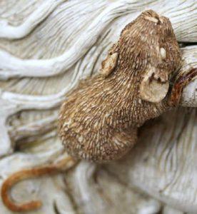 muin-mouse-friend