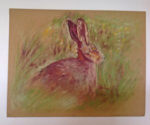 hare-picture2