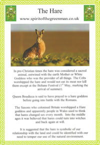 hare-fact-sheet