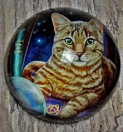 paperweightcat