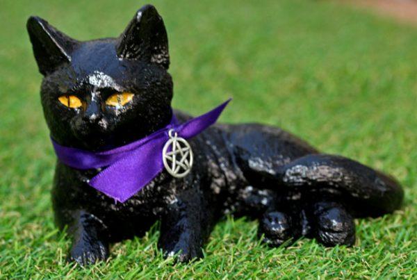 salem-witches-familiar-cat
