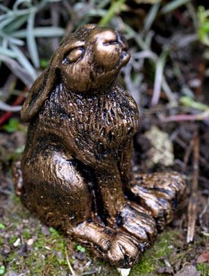 clove-hare